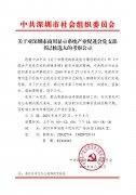 【公示】关于对深圳市商用显示系统产业促进会党支部书